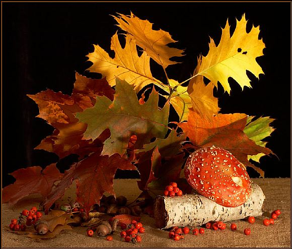 Фото открытка осень, летием сыну